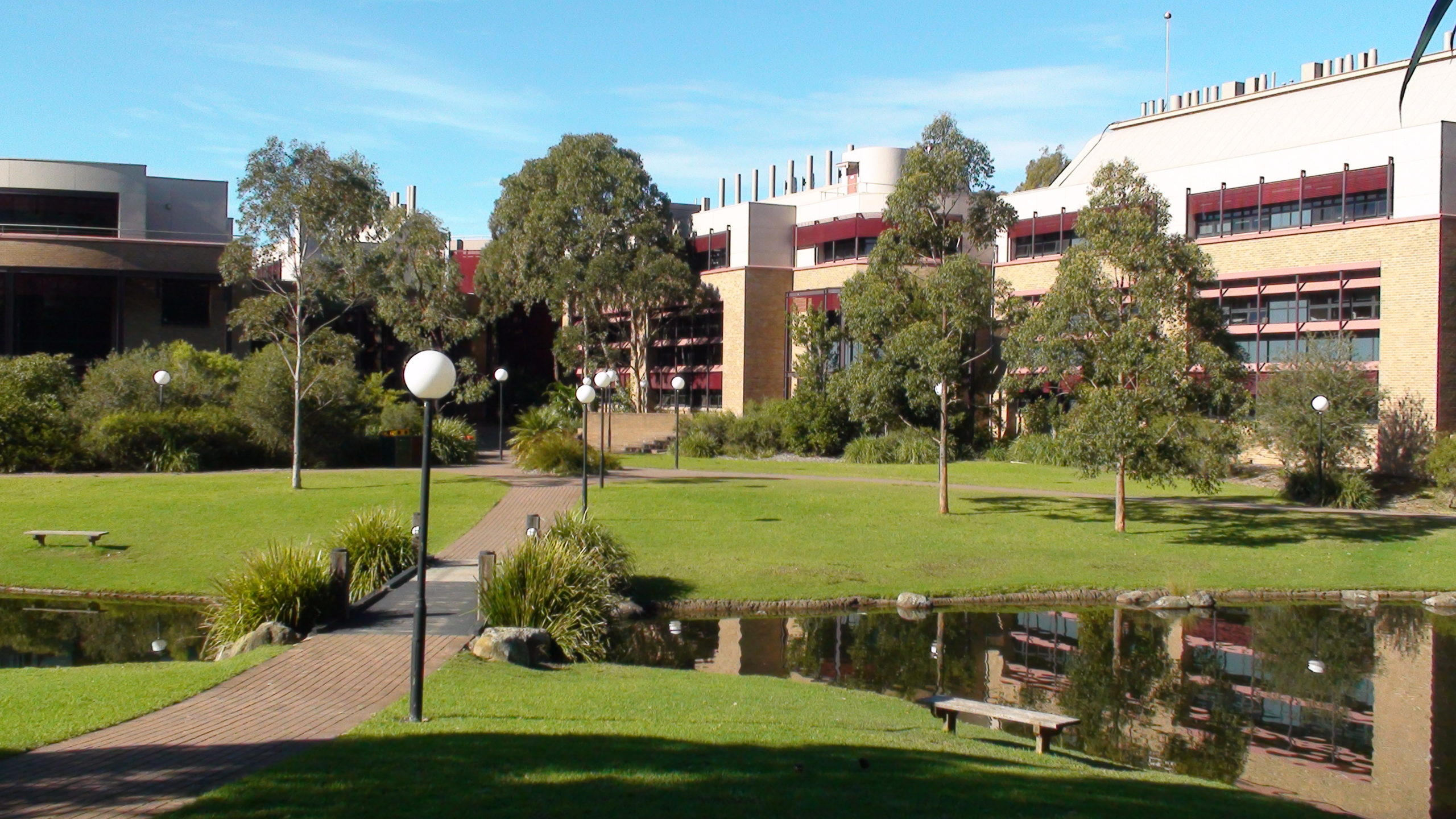 UOW ranks in the top 100 universities for 2 subjects