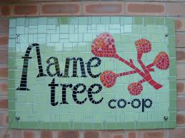 Growth of the Flame Tree Co-op