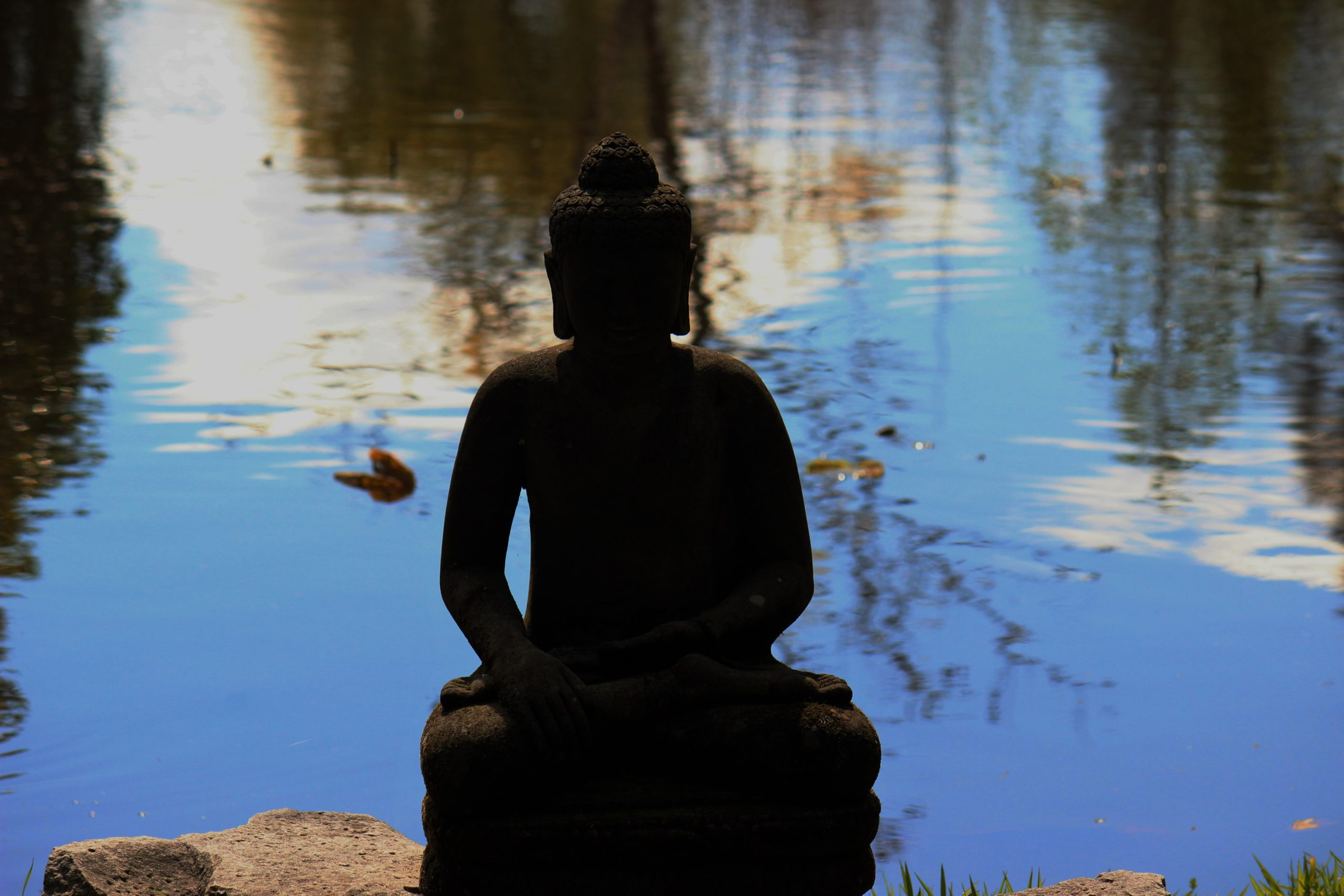 Inspired by Buddhism at the Nan Tien Temple