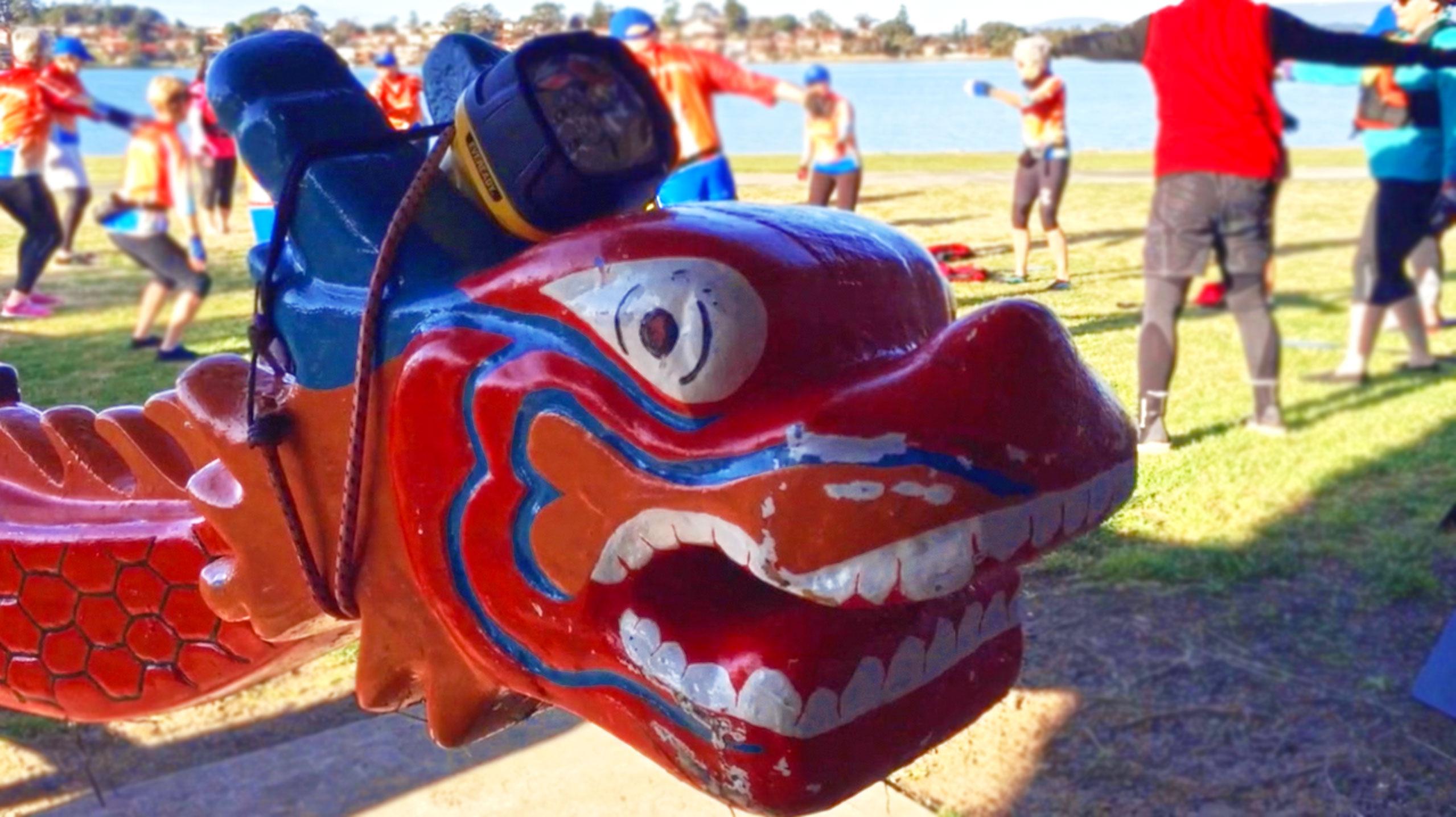 Illawarra Dragon Boat Club membership numbers fire up