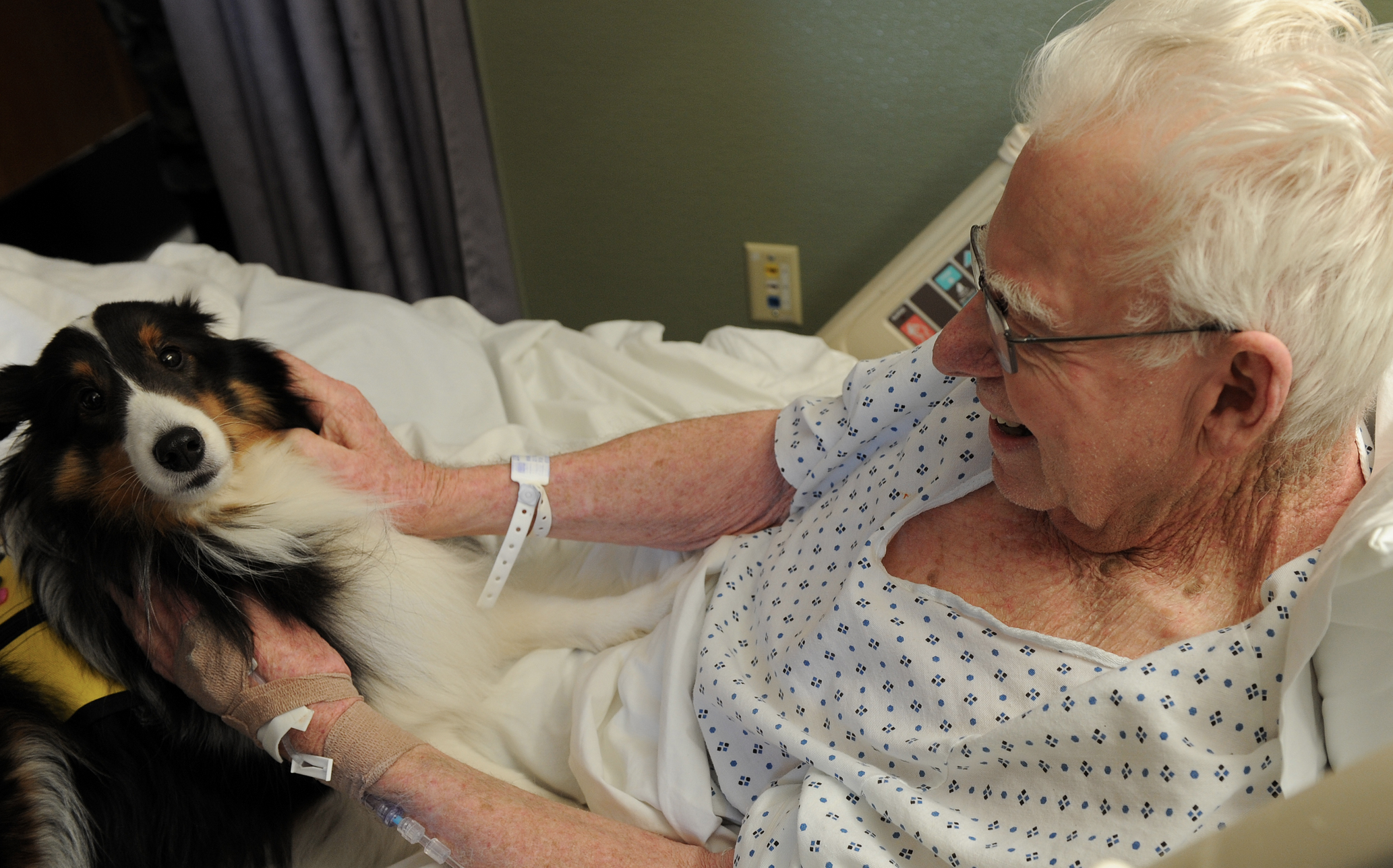 Therapy animals, more than fur & tails