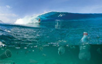 Surfers paddle to save Australian waters from oil drilling