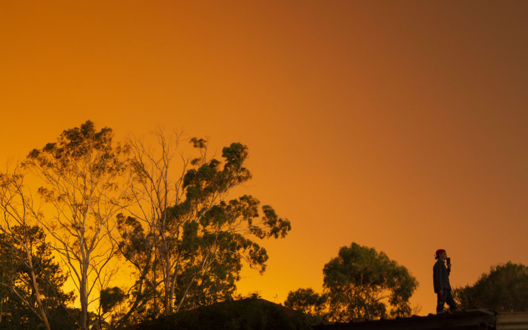 Sussex Inlet student photographer captures his family's battle with bushfire 'Beast'