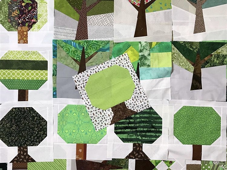 Illawarra quilters call for community to 'sew' support for bushfire victims