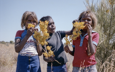 There's a 'new stolen generation': Indigenous organisation