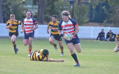 UOW Mallee Bulls return to first grade rugby